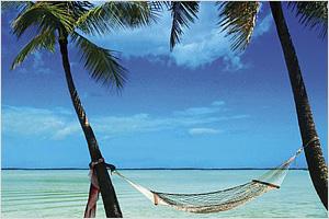 Mini_vacation
